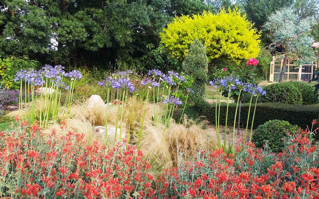 jardinier-paysagiste-creation-jardin-Var-83